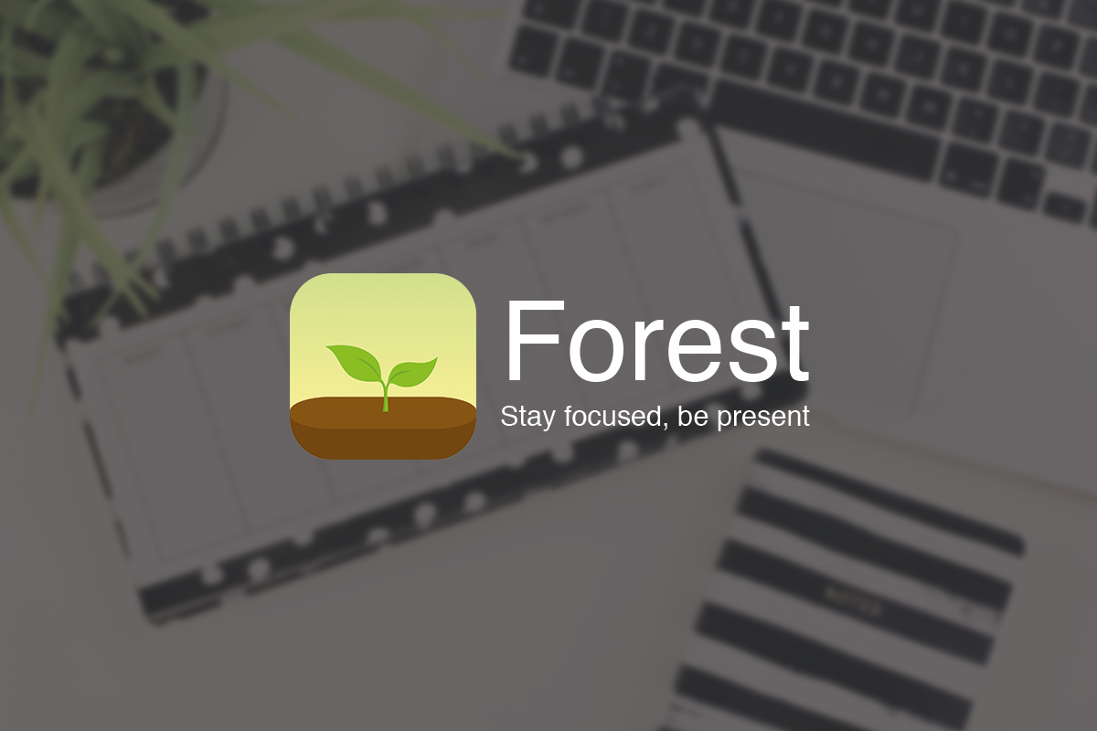 Be more productive with Forest app - Eros Banchellini